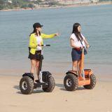 Zelf In evenwicht brengende Persoonlijke Vervoerder Twee Autoped van de Blokkenwagen van het Wiel de Elektrische Goedkope Elektrische voor Volwassenen