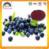 Extracto orgánico de los arándanos del polvo de la fruta