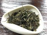 El té chino estándar de la UE de Yunnan en China el té verde