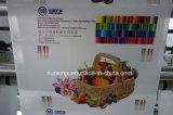 Recinto con la flexografía impresión gráfica en color de la máquina 4