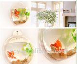 Tanque de peixes acrílico do espaço livre do projeto moderno mini