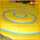 子供(AQ418)のためのヒマワリの主題の円形の膨脹可能な警備員