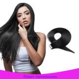 最もよい品質のRemyテープ毛の青い接着剤の直毛