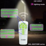 2017 Nouvelle conception Intelligent Street Lighting of Structure