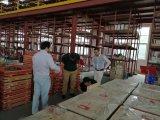 큰 크기 중국 직업적인 디스크 잎
