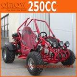Single One Seat 250cc Automatic Go Kart, Cross Kart