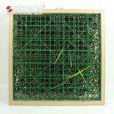 장식을%s 새로운 세대 형식 DIY 디자인 예술 3D 녹색 벽
