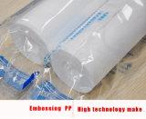10 Filtereinsatz des Zoll-pp.