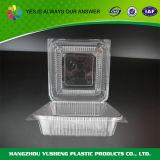 フルーツの使い捨て可能なプラスティック容器