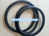 Cinghia esagonale AA/Haa Bb/Hbb Cc/Hcc di doppi V-Belts di alta qualità