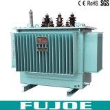 160kVA type immergé dans l'huile électrique à haute tension de 3 phases fournisseur du transformateur S11 de Chine