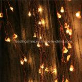 Le pétard allume la luciole blanche chaude de Ledoutdoor de lumières de chaîne de caractères de câblage cuivre pour des mariages d'usager