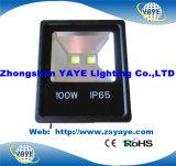 Luz de inundación de la MAZORCA 10W LED de la venta de Yaye 18 luz del jardín/del reflector calientes/10W LED de la MAZORCA 10W LED con Ce/RoHS