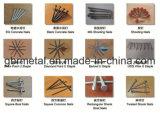 Q235, Q195 общие свободные ногти, НАПРИМЕР, HDG, ногти нержавеющей стали