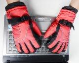 Перчатка лыжи малышей/перчатка зимы перчатки лыжи детей перчатки перста малышей 5/перчатка Detox/перчатка Okotex/перчатка лыжи Mitten/перчатка зимы Mitten