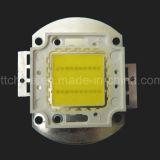 40W 광원, 옥수수 속 LED 의 40W 다기관 LED, 차가운 백색, 성격 백색, 유효한 온난한 백색 전부