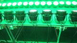 Rgbwauv 24PCS 방수 DMX LED 동위는 옥외 빛 할 수 있다