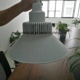 Longue lampe en aluminium E40 100W de Birdcage du collet DEL