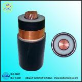 Câble d'alimentation plus vendu isolé par XLPE à plusieurs noyaux de cuivre