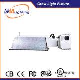最も新しい315W CMHのバラストは屋内プラントをつける温室のためのアルミニウム反射鏡の据え付け品キットが付いている照明バラストを育てる