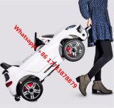 Véhicule électrique des mini gosses 12V bon marché de Lier 003 avec 2.4G Bluetooth