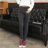 Europäischer heißer Verkaufs-neueste Entwurfs-Dame-Jeans
