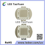 UV 광선 395nm 50W LED 빛