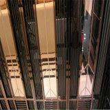 Het Haarscheurtje van het Frame van de Lift van het roestvrij staal beëindigt het Gestalte gegeven Profiel van 1.0mm Dikte