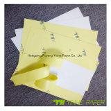 Documento stampato abitudine ed etichette adesive di plastica