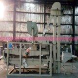 De Machine van de Schiller van de Zaden van de watermeloen met Output 120-150kg/H (tfbgz-300)