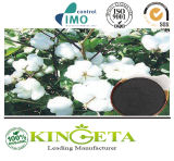 Fertilizante orgânico de bambu do ácido Humic de Biochar