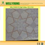 PVCによって薄板にされるMGOのクリーニングの天井