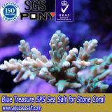 SPS 수족관 산호를 위한 바다 바다 소금