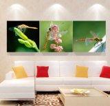La toile de décoration de maison de peinture de libellule de peinture à l'huile d'art de mur de 3 panneaux estampe des illustrations pour la salle de séjour Mc-260