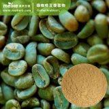 100% 자연적인 녹색 커피 콩 추출