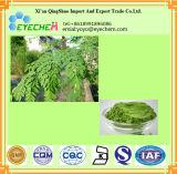 Moringa 잎 추출 또는 Moringa Oleifera 잎 추출