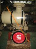 ¡Motores industriales N855-C de Cummins para la venta caliente del proyecto de la maquinaria de construcción!