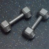 Tegel van de Vloer van Crossfit de Rubber, RubberMatten voor Gymnastiek