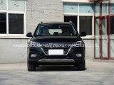 Auto Van uitstekende kwaliteit SUV van het Merk van China de Beroemde Elektrische