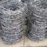 農場の囲うことのための12 1/2のゲージによって電流を通される有刺鉄線