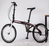 2017 heißes verkaufenFashiontype faltendes Fahrrad 20 Zoll