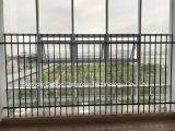Rete fissa rivestita del giardino della polvere nera di alta qualità