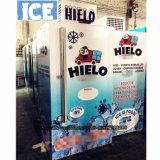 Merchandiser van de Bak van de Opslag van de Bagage van het ijs