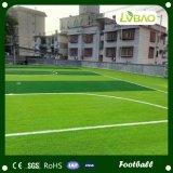 [هيغقوليتي] كرة قدم عشب اصطناعيّة في الصين ([و50])