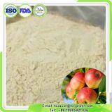 Pectina metossilica organica del commestibile della pectina del Apple di vendita all'ingrosso alta