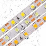 White 5054 SMD LED 300 tiras de LED flexible