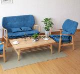 La piccola famiglia del sofà contratto e contemporaneo può Unpick e lavare la combinazione pura nordica del sofà del sofà di legno solido (M-X3261)