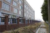 Шикарной черной декоративной загородка гальванизированная обеспеченностью стальная 13-1
