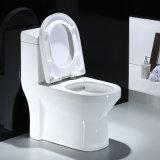 Armario de una pieza de cerámica wc wc wc (BG-A1007)