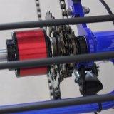 triciclo elettrico 500W per il doppio freno a disco adulto di Wirh